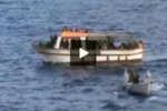 Tgs. Oltre 1.300 profughi soccorsi nel canale di Sicilia