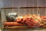 """Il corpo di Santa Lucia """"torna"""" a Siracusa dal 14 al 22 dicembre"""