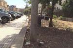 Parcheggiatori abusivi in via Agatocle a Siracusa