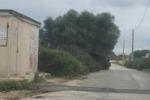 Siracusa, mobilità a rischio fra le strade della Penisola Maddalena