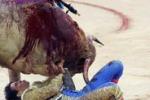 LA FOTO. La sconfitta del torero
