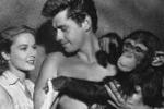 Morta a 80 anni Cita, la scimmia di Tarzan