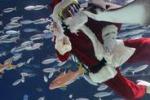 Babbo Natale in versione sub a Tokyo e Singapore