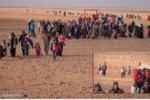 Bimbo siriano da solo nel deserto? Una bufala. Ecco perchè