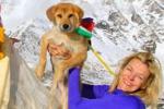 Impresa storica per Rupee, il primo cane a scalare l'Everest