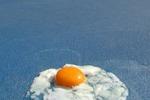 Caldo agli Australian Open, Djokovic cuoce un uovo in campo