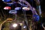 """""""Plas 2012"""", weekend di eventi e mostre a Castellammare"""