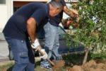 Iniziativa ambientale a Marsala: le immagini