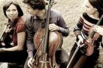 La musica del quartetto Lyskamm a Casa Santa Erice