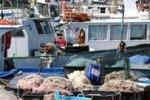 Da Tgs, la crisi della pesca a Mazara