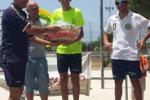 Ciclismo, atleti siciliani in gara a Palma per il trofeo Benivegna