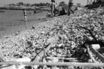 Da Tgs: Palermo, via i rifiuti da Barcarello
