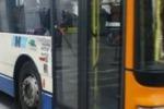 Panchine rotte alla fermata dei bus. Il servizio di Tgs