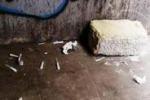 """Da Tgs: pulizia """"fai da te"""" nei sottopassi di Palermo"""