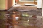 Da Tgs: Palermo, vandali alla scuola Falcone dello Zen