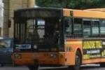 Bus, nuovo piano a Palermo. Il servizio di Tgs
