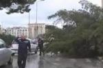 Da Tgs. Maltempo in Sicilia, le immagini dei danni