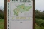 Palermo, vandali al parco Cassara'. Il servizio di Tgs