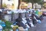 Rifiuti a Palermo, le immagini dell'emergenza