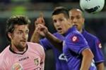 Da Tgs, Fiorentina-Palermo nell'analisi di Angelo Morello
