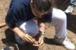 Studenti-archeologi al parco Himera. Il servizio di Tgs