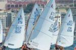 Il dinghy torna di moda, regata a Palermo. Il servizio di Tgs