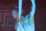 Acrobata del Cirque du Soleil muore durante uno show