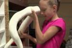 A 9 anni vive con 30 serpenti: dal Michigan la storia di Krista