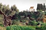 Agrigento: Kolimbethra, aumentano i turisti Quasi il doppio nel mese di giugno