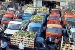 Ortaggi sempre più cari dal mercato alla tavola, prezzi quintuplicati a Santa Croce