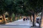 Viale della Vittoria troppo scivoloso: «Si corre ai ripari»