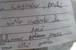 Strage di Capaci, gli studenti all'Albero Falcone