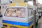 Soccorso stradale, Sicilia in ritardo Solo un'ambulanza in tutta l'Isola