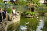 Parco d'Orleans, avviato il maxi trasferimento di 1.200 animali