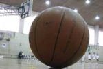 Troppi show e pochi impianti Sport in ginocchio a Palermo
