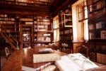 """La """"battaglia"""" per salvare la Biblioteca Fardelliana"""