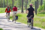 Tutti in bicicletta tra arte e natura La Sicilia scoperta con... due ruote
