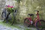Palermo e le bici sui marciapiedi