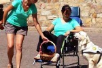 Aiuto a 4 zampe ai disabili Cani addestrati e poi donati