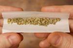 I danni della cannabis Palermo, al via un progetto