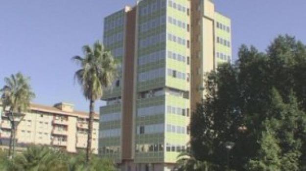 Asilo di Paternò, Catania, Politica