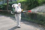 Salute, continua la lotta alle zanzare Da stasera gli interventi nelle frazioni
