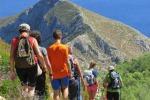 Escursioni dallo Zingaro all'Etna Boom di stranieri e siciliani