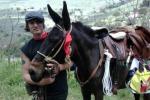 Giovane da domani in viaggio per la Sicilia su un mulo