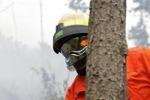 Servizio antincendio in Sicilia: saranno impiegati tutti i forestali in graduatoria