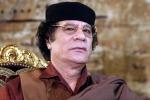 Sequestrati beni di Gheddafi C'è anche un bosco a Pantelleria