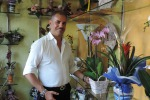 Arredare con piante e fiori «Ideali con lo stile moderno»