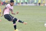 Stevanovic ko, il Palermo frena: Hernandez verso un'altra chance