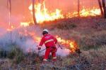Incendi, paura a Mondello: evacuate 25 ville
