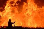 Incendi, in fiamme 44 ettari di macchia mediterranea tra Piazza Armerina e Aidone